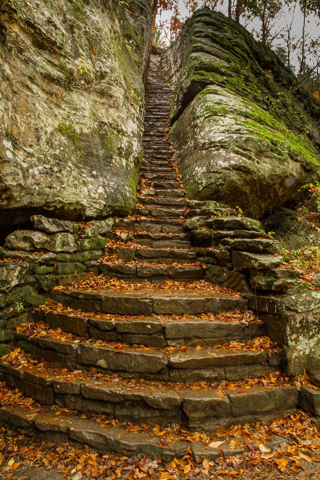 ... Shawnee National Forest. Man Made Staircase   Bell Smith Springs  Wilderness Area